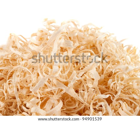 Wood shavings on white background with copy space. Macro with shallow dof. - stock photo