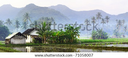 Wood small building on rice terrace in mountains. Bali. Indonesia - stock photo