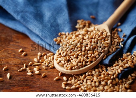 Wood spoon with whole wheat grains