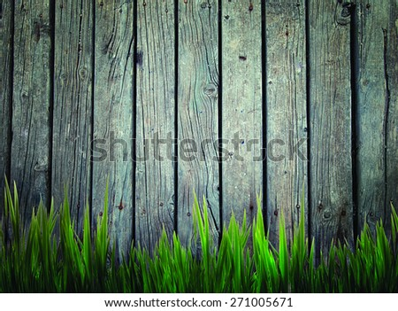 Wood. Spring grass background. Grass over wood. Nature background with grass and wood - stock photo