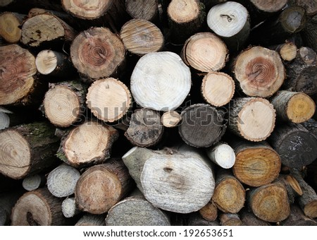 Wood stack lumber photograph