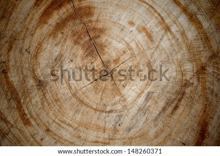 Wood surface texture background