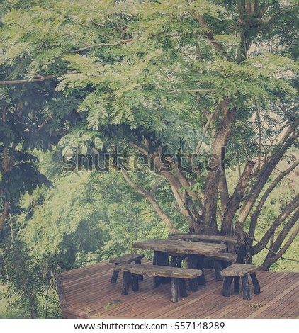 Wood table and chair under big tree