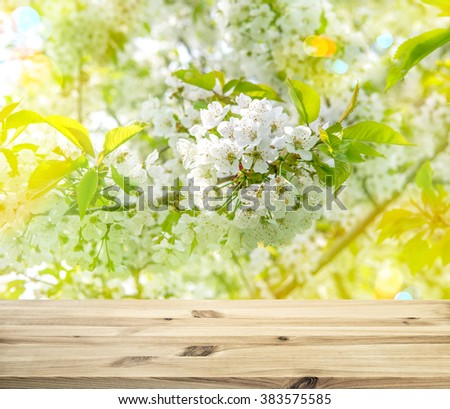 Wood table top on shiny sunlight blossoming of cherry blooms background. Spring flowers with sun rays and light leaks. Selective focus - stock photo