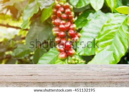 wood table with fresh coffee beans in coffee plants tree blur background, for product display - stock photo