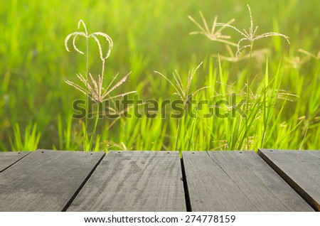 wood terrace and green grass field use as natural background,backdrop - stock photo
