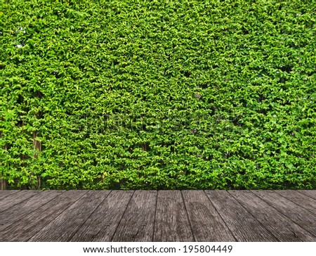 Wood terrace with Green landscape  - stock photo