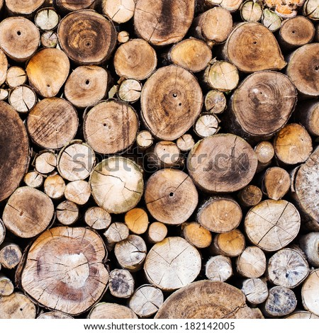 Wood texture background have many logs that cut from big tree and small tree - stock photo