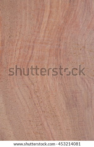 Wood texture background, nature pattern