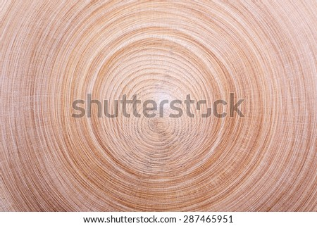 wood texture circles close-up background - stock photo