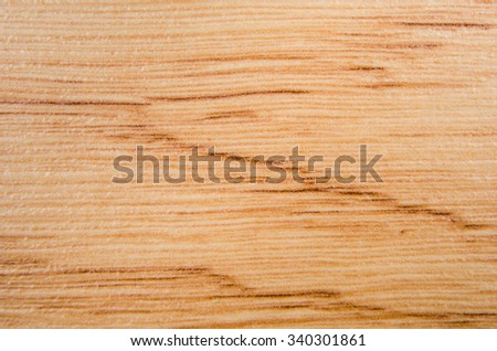 Wood texture. Macro photo for microstock - stock photo