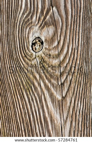 Wood texture of wooden board using for fabricate the bench - stock photo