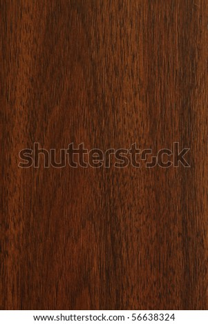 Wood texture or Wood pattern - stock photo