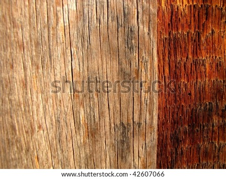 wood texture with contrasting colors