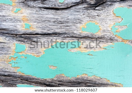 wood texture with green color