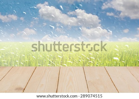 Wood texture with rain drops on a window or water drops on grass blurred with green rice field and blue sky. - stock photo