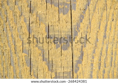 Wood texture, wood background and foundation - stock photo