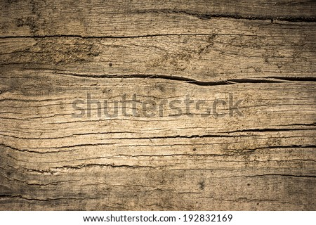Wood Texture./ Wood Texture. - stock photo