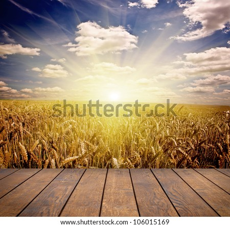 wood textured backgrounds in a room interior on the sky backgrounds - stock photo