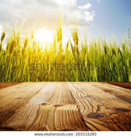 wood textured backgrounds  on the sky backgrounds  - stock photo