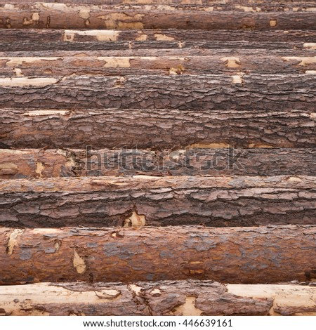 Wood timber pile, wooden lumber as background - stock photo