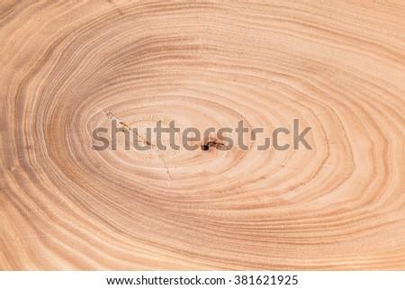 wood tree texture cut lumber - stock photo