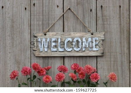 Wood welcome sign with pink spring flower border - mums - hanging on shabby weathered wooden fence - stock photo