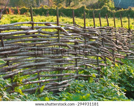 Wood wicker fence from curved wooden twigs. Wooden fence