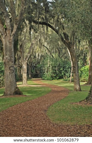 Wooded Walk-path at Bok Tower Gardens. Lake Wales, Florida