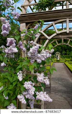 Wooden arbor in a park or garden - stock photo