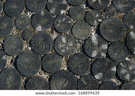 wooden background circles - stock photo