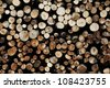 Wooden background - stack of firewood for winter - stock photo