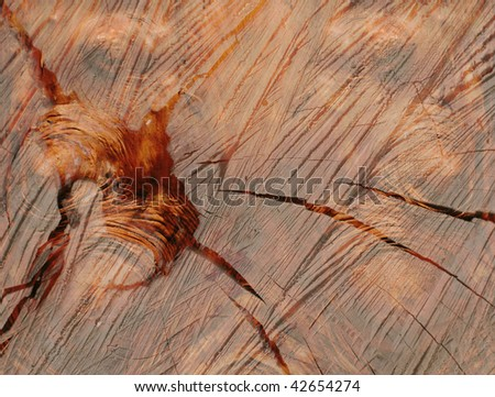 Wooden backgrounds with rich wood grain texture and knots - stock photo