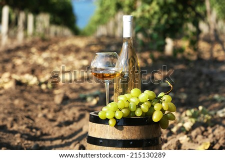 Wooden barrel, grape and bottle of wine on grape plantation background