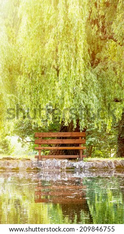 Wooden bench and weeping willow (salix babylonica) are mirrored in the lake. - stock photo