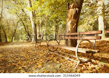 Wooden bench in autumn park - vintage photo
