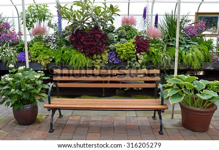 Wooden bench in colorful lush garden greenhouse - stock photo