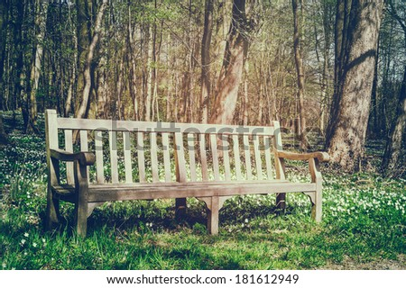 Wooden bench in sunny spring park  - stock photo