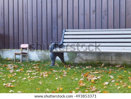 wooden bench on the lawn