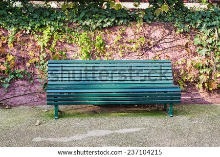 Wooden bench with green ivy leaves on wall - stock photo