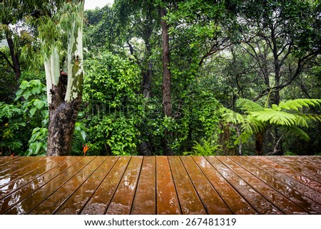 Wooden boards stretch out in perspective to the lush green forest behind. Focus is on the forest. - stock photo
