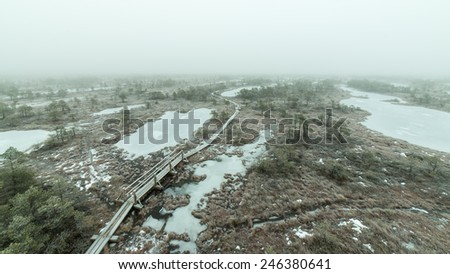 wooden boardwalk in frosty winter bog landscape with frozen nature