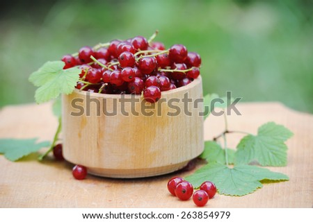 Wooden bowl with fresh red currants outdoor - stock photo