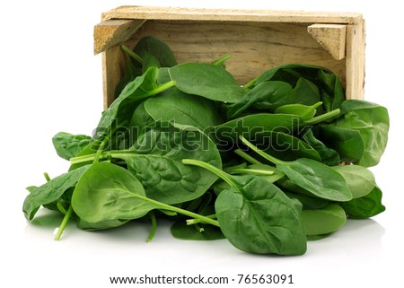 wooden box with freshly harvested spinach leaves on a white background - stock photo