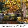 Wooden bridge at the park in autumn - stock photo
