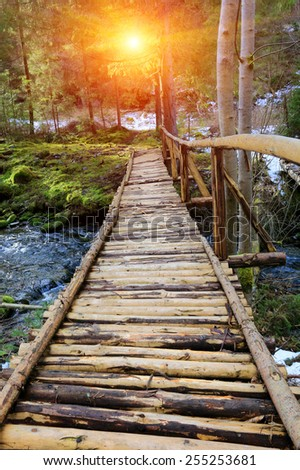 wooden bridge in deep forest - stock photo