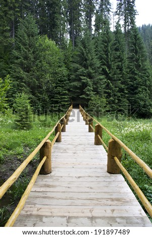 Wooden bridge in forest - stock photo