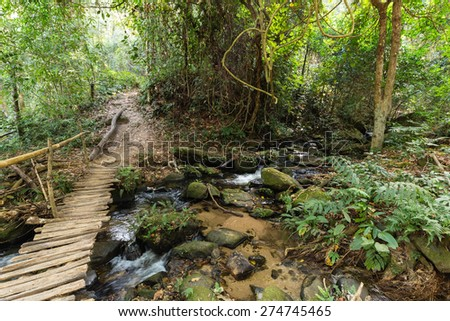 Wooden bridge in jungle over a small river, Doi Inthanon national park, Thailand - stock photo