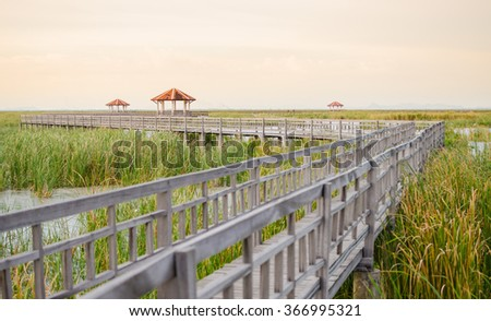 Wooden bridge in synset time at Sam Roi Yot National Park,Thailand - stock photo