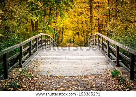 Wooden bridge in the autumn park - stock photo